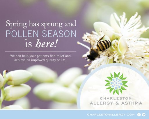 Charleston Allergy and Asthma